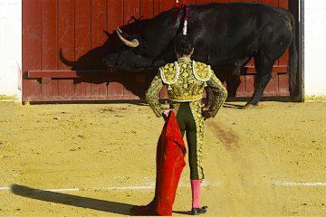 Otro grande el diestro José Tomás observa la muerte de su primer toro durante la tercera corrida de la Feria de la Virgen de San Lorenzo de Valladolid en donde ha compartido cartel con José Mari Manzanares y el rejoneador Leonardo Hernández.EFE/NACHO GALLEGO