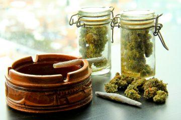 En el apartado de puntos de ventas, señaló que los dispensarios que comercializan marihuana medicinal actualmente están ubicados en las localidades de Bayamón, Toa Baja y Barceloneta, un número muy alejado de las necesidades del territorio caribeño. (Dreamstime)