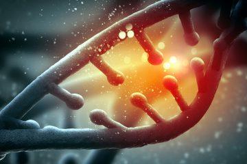La actividad de esta proteína previene que algunas bacterias como 'Mycobacterium tuberculosis', causante de la tuberculosis, adquieran muy fácilmente resistencia a los antibióticos. (Dreamstime)