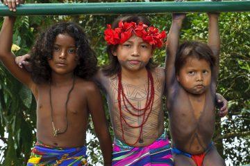 Centenares de indígenas de varias regiones del país llegaron este miércoles a las afueras del Organismo Legislativo para demandar a los diputados que discutan y aprueben las reformas. (Dreamstime)