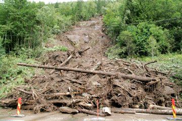 La aportación se hará a través de la activación de un convenio con la ONG Acción contra el Hambre y una aportación al Fondo de Socorro ante Desastres. (Dreamstime)