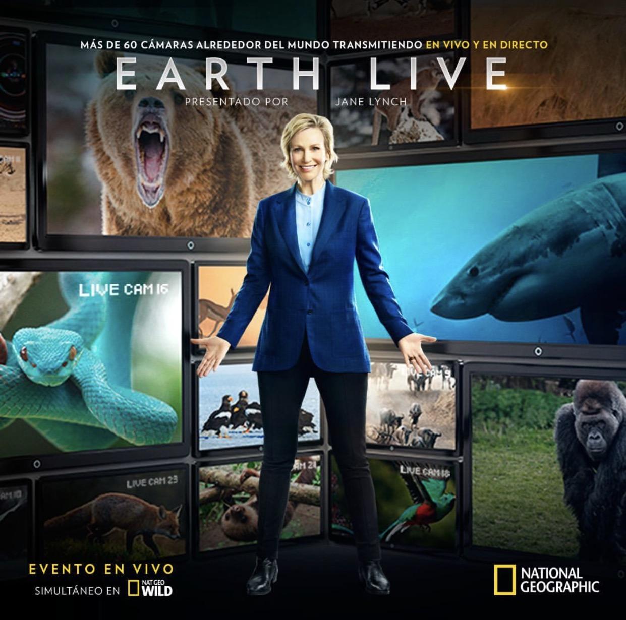 """NG4 """"la fauna más cautivante de la Tierra en """"LA TIERRA ¡EN VIVO!"""