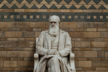 En 1834, Darwin encontró los primeros restos fósiles de este animal (macrauquenia) en Uruguay y Argentina, y se los pasó al renombrado paleontólogo británico Richard Owen, quien quedó desconcertado por su inusual combinación de rasgos que impedía establecer su relaciones evolutivas. (Dreamstime)
