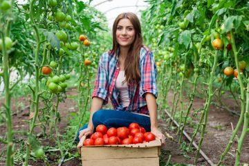 La FAO redefinió, según explicó Beduschi, sus objetivos para los próximos años y centró sus esfuerzos en erradicar el hambre, la inseguridad alimentaria y la malnutrición, por lo que para el experto es clave el desarrollo rural sostenibles a tenor de las estadísticas. (Dreamstime)