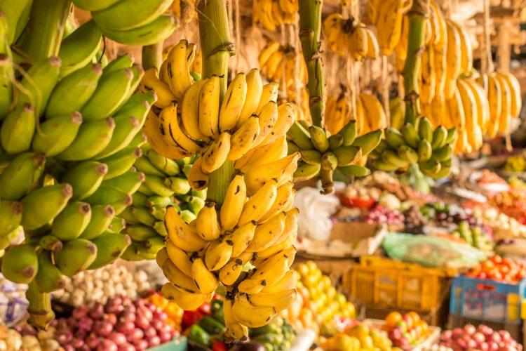 En el anterior congreso, celebrado en Miami en abril de 2016, se decidió que por un periodo de seis años no se realizarán reuniones del sector en países productores de bananos o plátanos con el fin de impedir la propagación del hongo Fusarium raza 4. (Dreamstime)