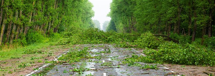 El ciclón, con vientos máximos sostenidos de 120 kilómetros por hora se mueve hacia el norte lentamente, a 11 kilómetros por hora, y se espera que se frene todavía más en las próximas horas. (Dreamstime)