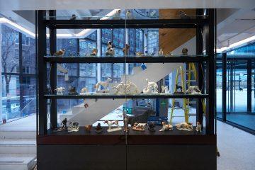 Ven y conoce el espectacular museo AKC Museo del Perro.