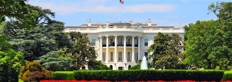 En una de las últimas llamadas telefónicas entre ambos, Trump y Al Sisi discutieron sobre las posibles soluciones políticas a las crisis que se suceden en Oriente Medio, especialmente en Libia, Siria y Yemen. (Dreamstime)