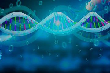 El pasado febrero, un tribunal dio permiso a los interesados a contrastar su ADN con el del médico holandés a través de varios artículos de uso personal que están guardados en un lugar secreto y bajo llave. (Dreamstime)