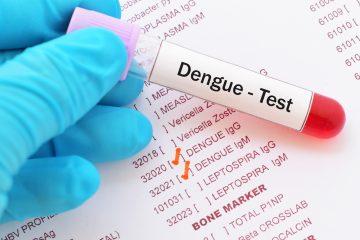 El dengue es la enfermedad infecciosa de más rápida expansión en el mundo, con medio millón de infecciones potencialmente mortales de media al año y unas 20.000 muertes, en su mayoría niños. (Dreamstime)