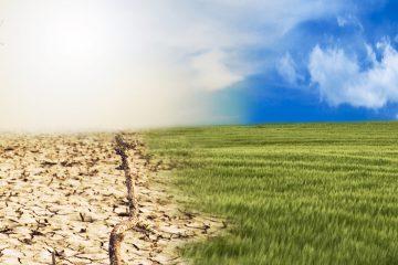 """Greenpeace también ha presentado el informe """"Cambia la energía, no el clima"""", en el que se detalla que los últimos cuatro años han sido los más cálidos de la historia de la humanidad y que también se ha batido el récord de CO2 en la atmósfera, a niveles que no se alcanzaban desde hacía 3 millones de años, antes de que el ser humano habitara la Tierra.  (Dreamstime)"""