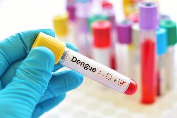 En Miami-Dade son ahora cuatro los casos de la enfermedad vírica que transmite el mosquito Aedes aegypti en los que va de 2019. (Dreamstime)