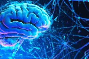 La hemisferectomía es un procedimiento quirúrgico que consiste en la extracción o inhabilitación de una de las mitades del cerebro.  (Dreamstime)