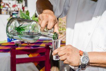 Además, servirían para generar fructosa, que puede ser utilizada para producir jarabe de alta fructosa (endulzantes), biocombustibles y polímeros biodegradables. (Dreamstime)