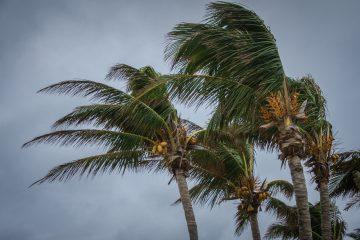 Laura presenta ahora vientos máximos sostenidos de 75 millas por hora (120 km/h) y se mueve en dirección nornoroeste a 17 millas por hora (28 km/h)  (Nueva York)