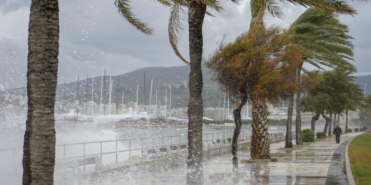 El centro meteorológico indicó que los vientos máximos de Josephine han aumentado a cerca de 75 km/h (45 m/h), con ráfagas más fuertes. (Dreamstime)
