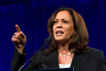 Por su experiencia, Harris refrescaría la agenda en temas de ciberseguridad, narcotráfico y contrabando de armas. (Dreamstime)