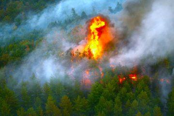 El incendio, conocido como Grizzly Creek por su lugar de origen, comenzó hace 10 días, ya consumió más de 11.000 hectáreas y no se ha contenido en absoluto. (Dreamstime)