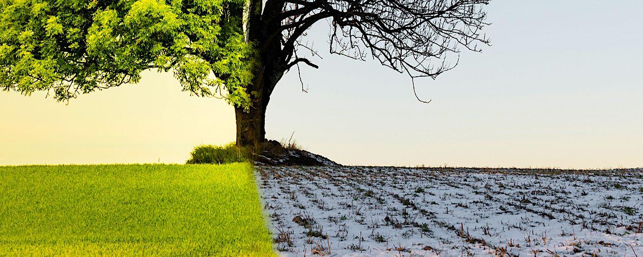 """""""Este informe evidencia que, aunque muchos aspectos de nuestras vidas se han visto alterados en 2020, el cambio climático avanza implacable"""", añade el secretario general de la OMM, Petteri Taalas.  (Dreamstime)"""