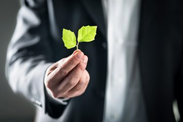 """El crédito será a ocho años y se otorgará a empresas procedentes de todo el país que estén comprometidos con el """"desarrollo de proyectos verdes en el país."""" (Dreamstime)"""