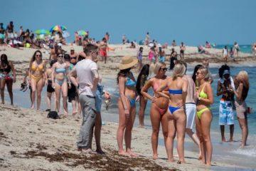Rodríguez aclaró que llevar bebidas alcohólicas a la playa o fumar marihuana es prohibido en todo el condado de Miami-Dade.  (EFE)