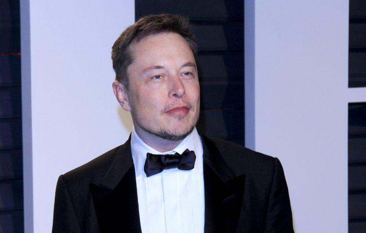 """En su cuenta de Twitter, Musk aseguró que el mono """"está jugando al literalmente al videojuego de forma telepática usando un chip cerebral"""". (Dreamstime)"""