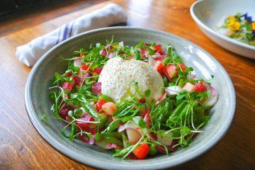Disfruta la Spring Burrata Salad en Alfie's Bar & Kitchen.