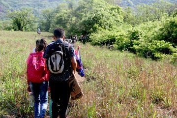 Dividido en siete secciones, el documento ofrece propuestas detalladas para facilitar la entrada de distintos tipos de inmigrantes, como trabajadores cualificados y agrícolas o familiares de estadounidenses que viven en el extranjero, así como demandantes de asilo. (Dreamstime)