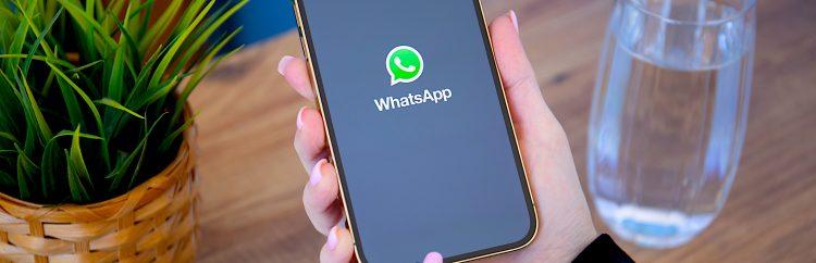 Precisamente por la controversia y confusión generadas, WhatsApp ya retrasó a principios de año la fecha límite de actualización, que pasó de febrero a mayo. (Dreamstime)