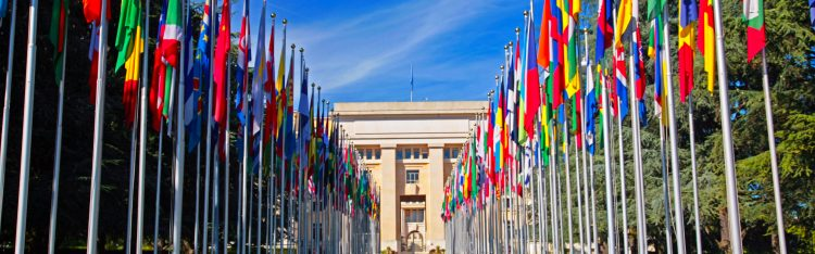 El diplomático portugués también hizo un llamado a la comunidad internacional para evitar que el terrorismo vuelva a echar raíces en territorio afgano. (Dreamstime)